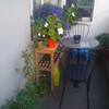 balcony plants and table