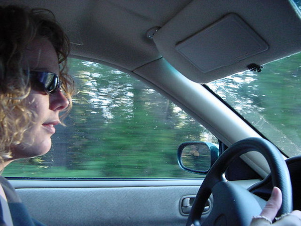 riss drives