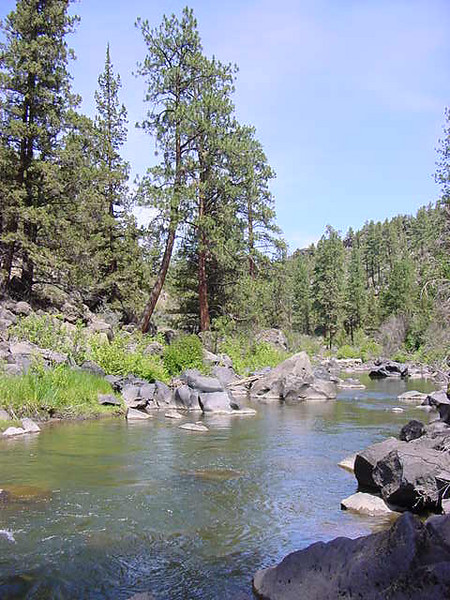 river in bend