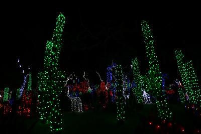Ethel M Chocolates Cactus Garden Holiday Lighting