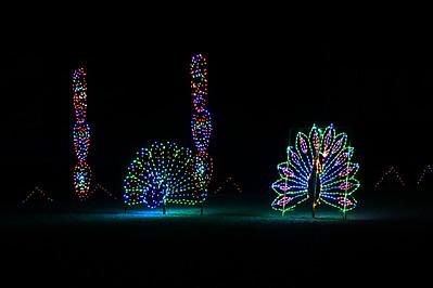 Glittering Lights at Las Vegas Motor Speedway