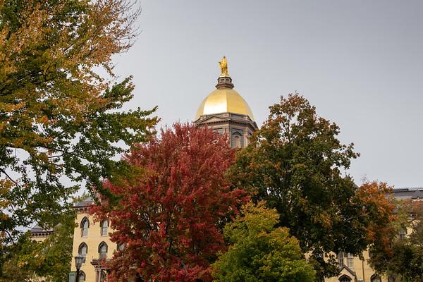Notre Dame and Potawatomi Zoo