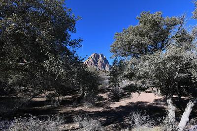 Spring Mountain Ranch State Park, Blue Diamond, Nevada