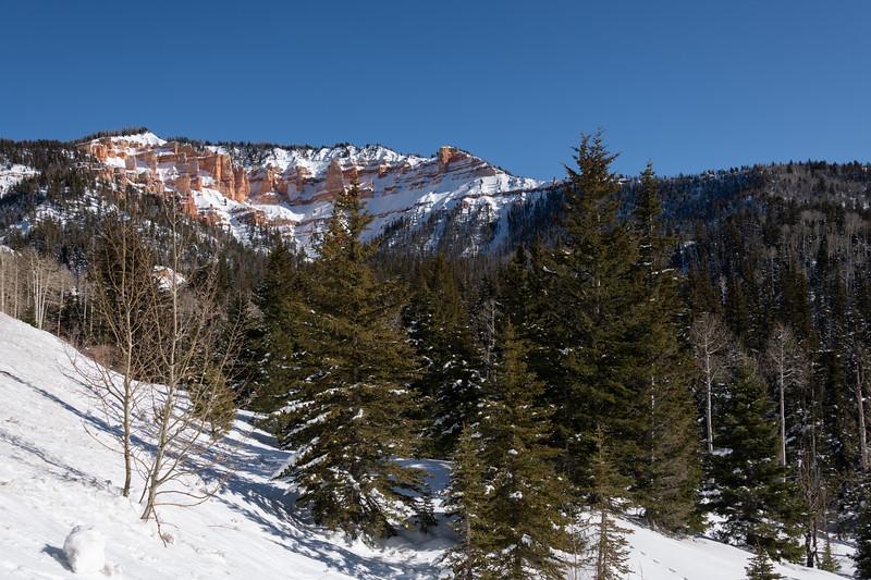 Cedar Canyon, Brain Head, Utah
