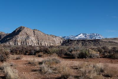Snow Canyon State Park, Ivins, Utah