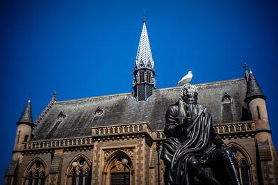 Mueseum, Poet, Seagull