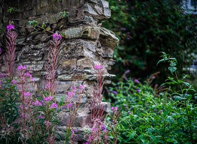 Wall, Flowers