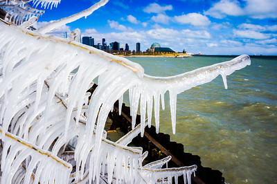 Icicle Tree Branch and Chicago Skyline
