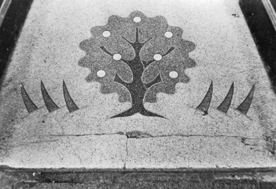 Lino Tree