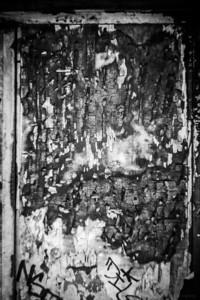 Burned Door