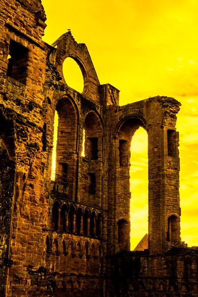 Arbroath Abbey in Yellow