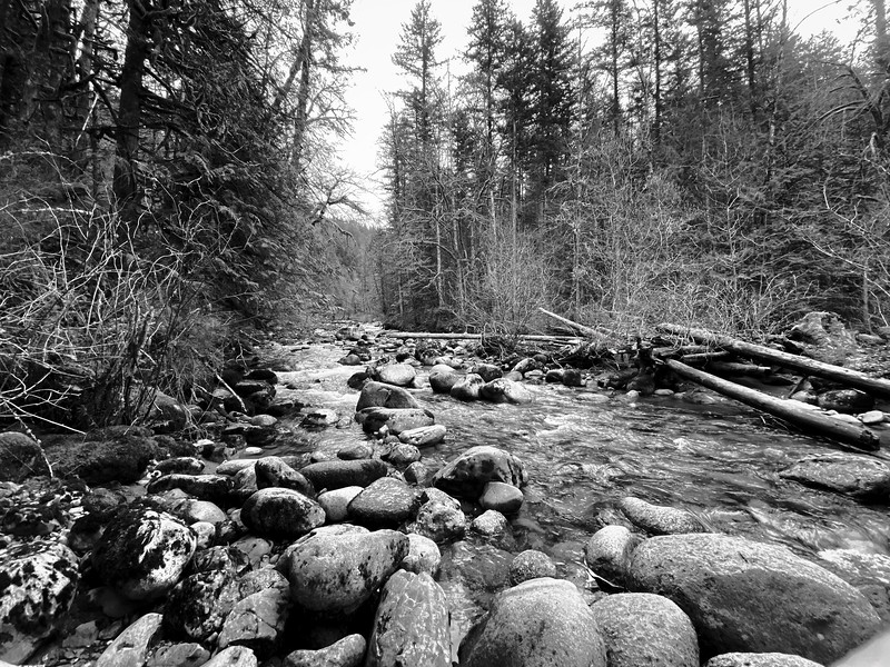 Wallace River