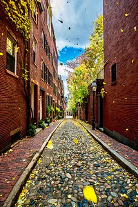 A Gust Of Wind At Acorn Street