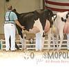 All-American16_Holstein_IMG_2003