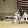 All-American16_Holstein_IMG_2472