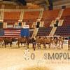 All-American16_JR_MilkingShorthorn_DSC_3234