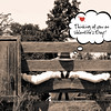 """<a href=""""https://www.greetingcarduniverse.com/holiday-cards/valentines-day-cards/for-sweetheart/greeting-card-1213510?aid=253730"""">https://www.greetingcarduniverse.com/holiday-cards/valentines-day-cards/for-sweetheart/greeting-card-1213510?aid=253730</a>"""