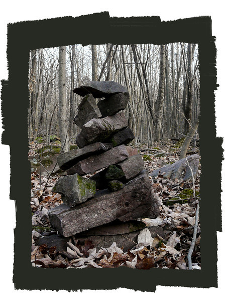 During our walk through the forest last week, we built this inuksuk, and a few others to keep her company.