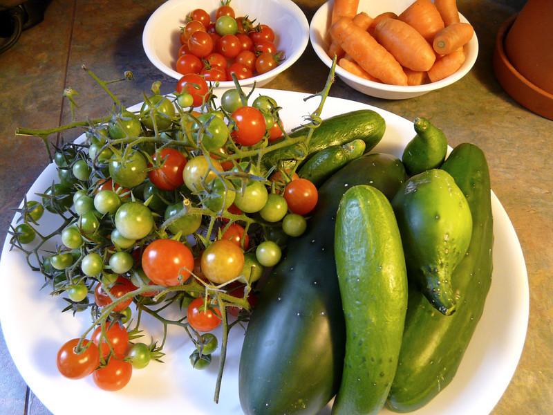 September 30th--last harvest.