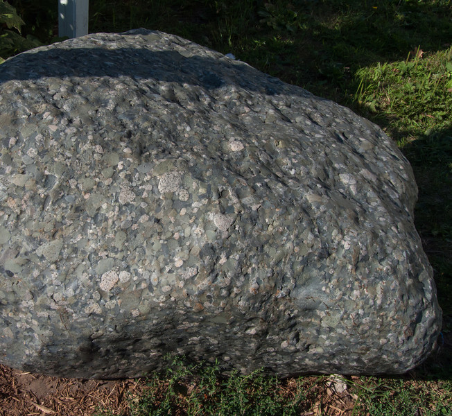 Paddy thought it was a meteor but in fact, it is a rock called conglomerate. In Kincardine, Ontario.