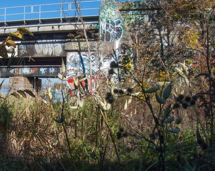 Chaotic Cacophony of Colour under the bridge.