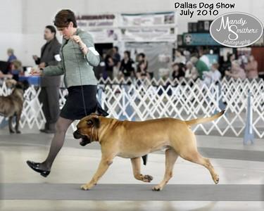 2010 July Dallas Dog Show