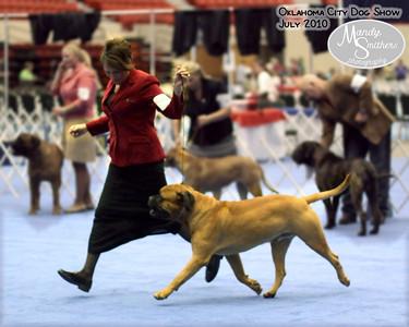 2010 Oklahoma City Dog Show