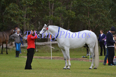 Gosnells Winter Breed Show August 2012