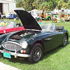 Timeless Wheels & Wings Show, New Smyrna Beach - October 2010 <br /> Healey, green 4