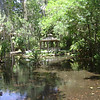 nature trail at gazebo <br /> Washington Oaks Picnic <br /> May 22 2010