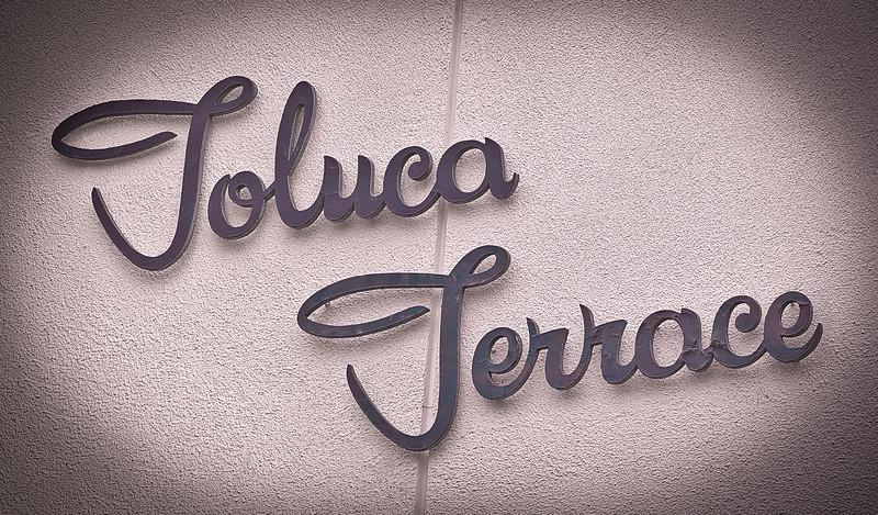 "Toluca Terrace <span style=""color: #666; font-size: 13px;"">In Mauve</span>"