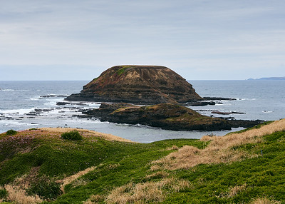 View from Nobbies, Phillip Island