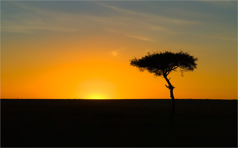 Kenya Sunrise