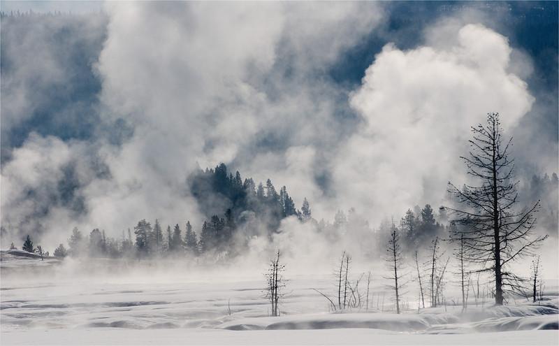 Geyser Steam