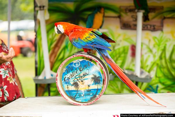 2014 CNPF Bird Show