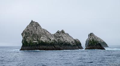Shag Rocks