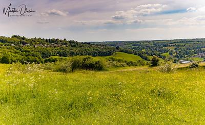 NT Rodborough Common
