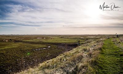 Frampton Marsh RSPB