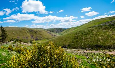 Alwin Valley