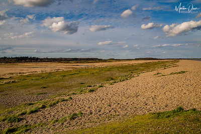 Dingle Marshes RSPB