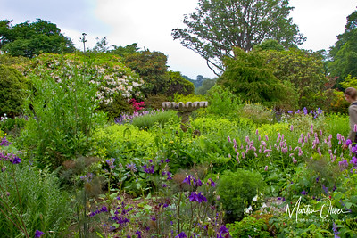 Bodnant Gardens 2010