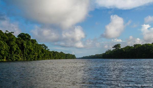Tortuguero Area