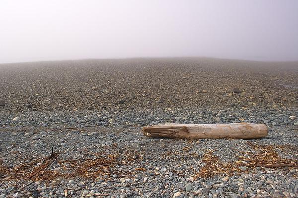 Log in Fog