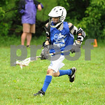 Little lacrosse1 119