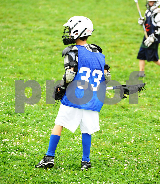 Little lacrosse1 230
