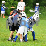 Little lacrosse1 110