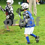 Little lacrosse1 233