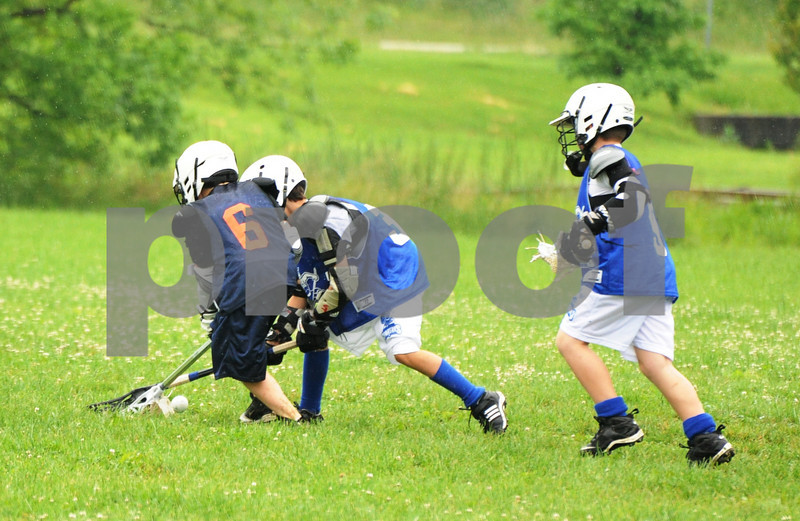 Little lacrosse1 089