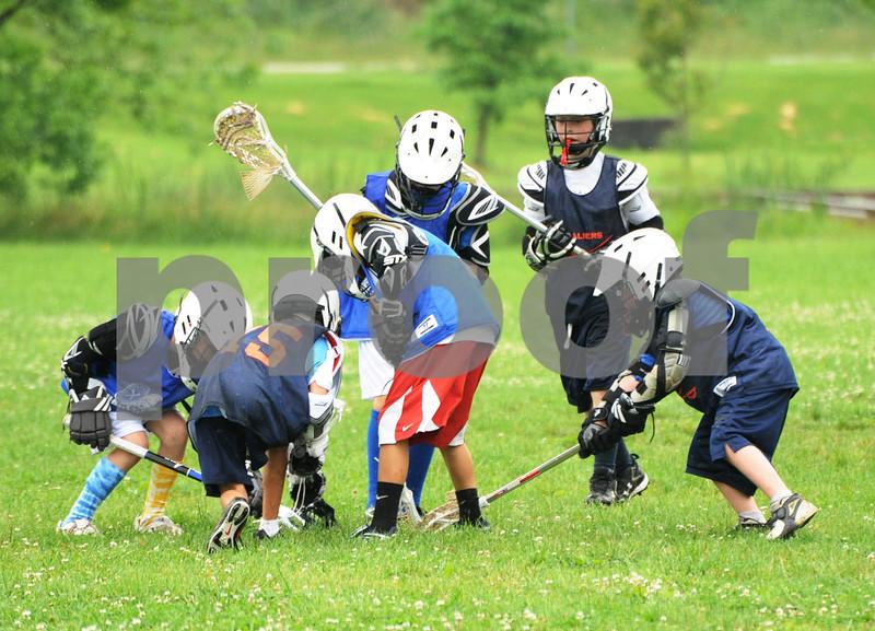 Little lacrosse1 221