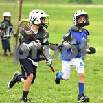 Little lacrosse1 098